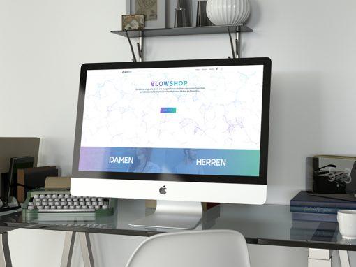 Webshop erstellen lassen Graz